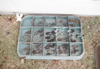What is it about irrigation boxes?